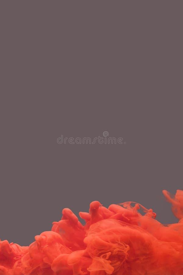 Schwärzen Sie das Wirbeln in Wasser, Wolke der Tinte mit Tinte lizenzfreie stockfotos
