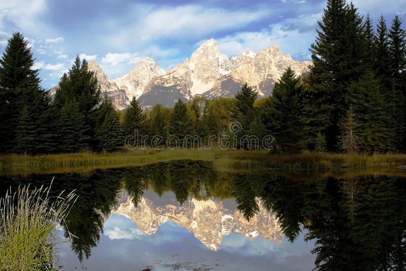 Schwabacher Pond Reflection stock image
