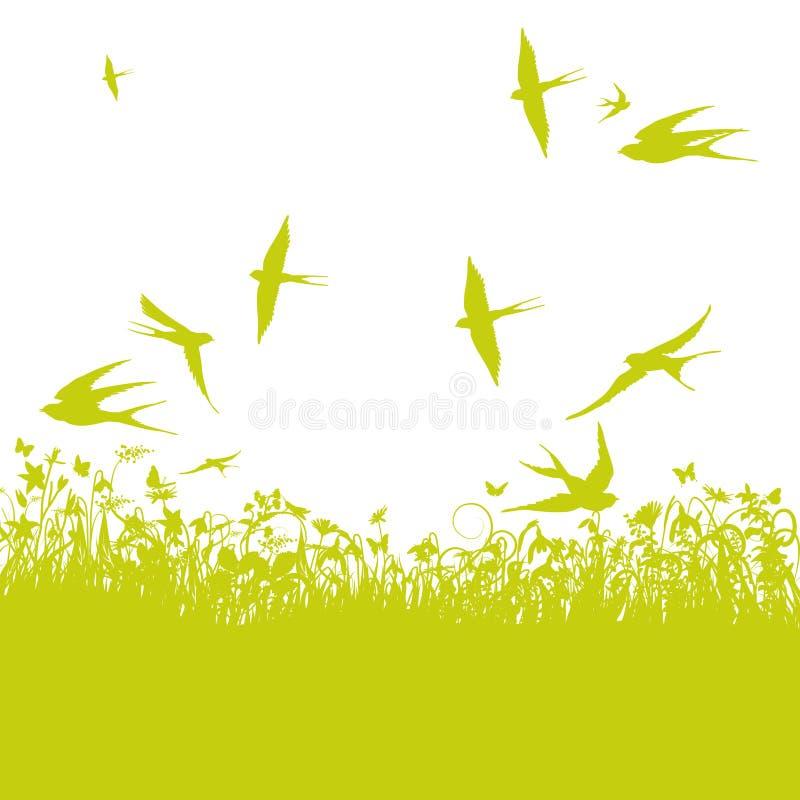 Schwalben im Frühjahr stock abbildung