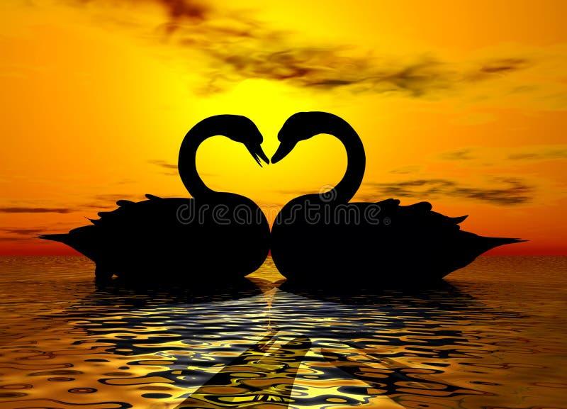 Schwan-Liebe im Sonnenuntergang lizenzfreies stockfoto