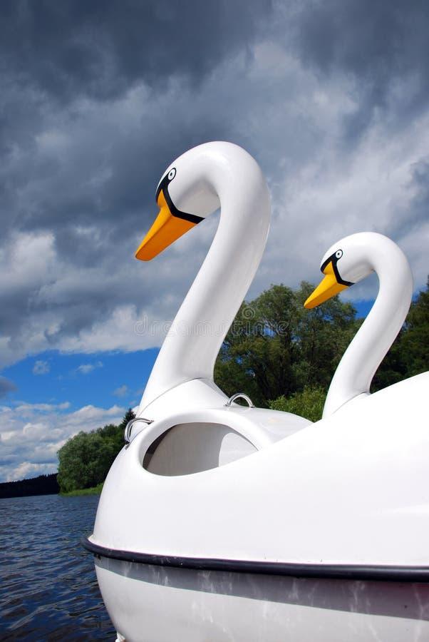 Schwanboot lizenzfreies stockfoto