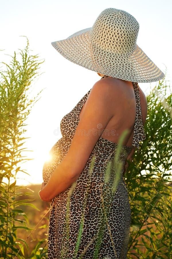 Schwangere Frau auf dem Gebiet lizenzfreies stockfoto