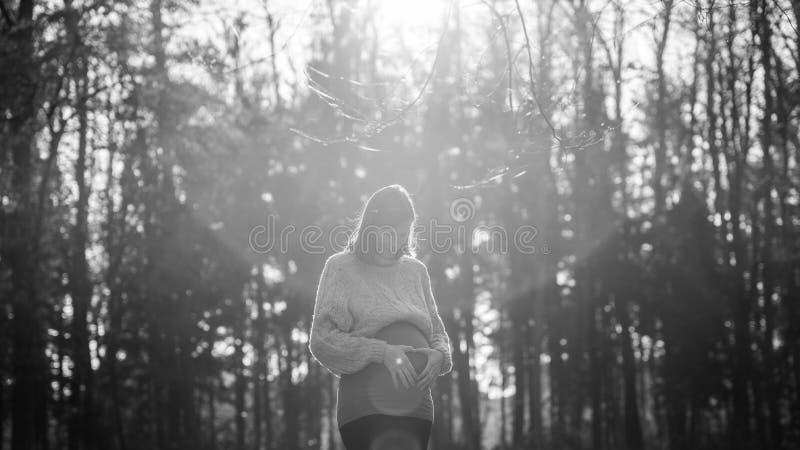 Schwangere Frau, die Herzform mit ihren Palmen auf einem Bauch macht stockfotografie
