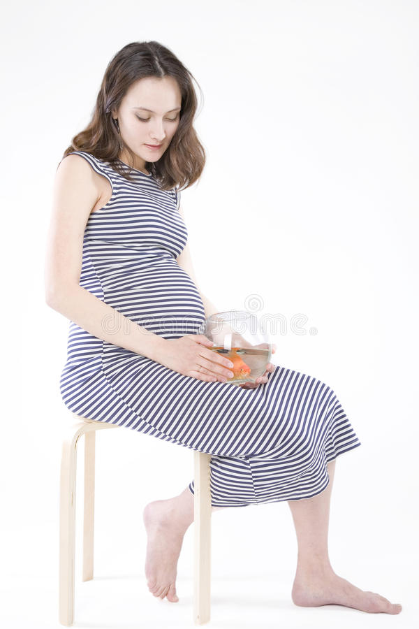 Schwangere Frau mit Aquarium stockbild