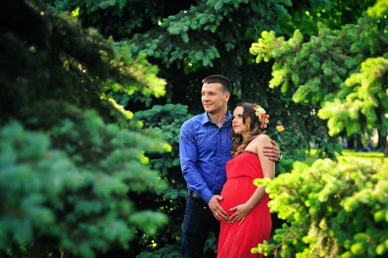 Schwangere Frau und ihr Ehemann lizenzfreie stockfotos