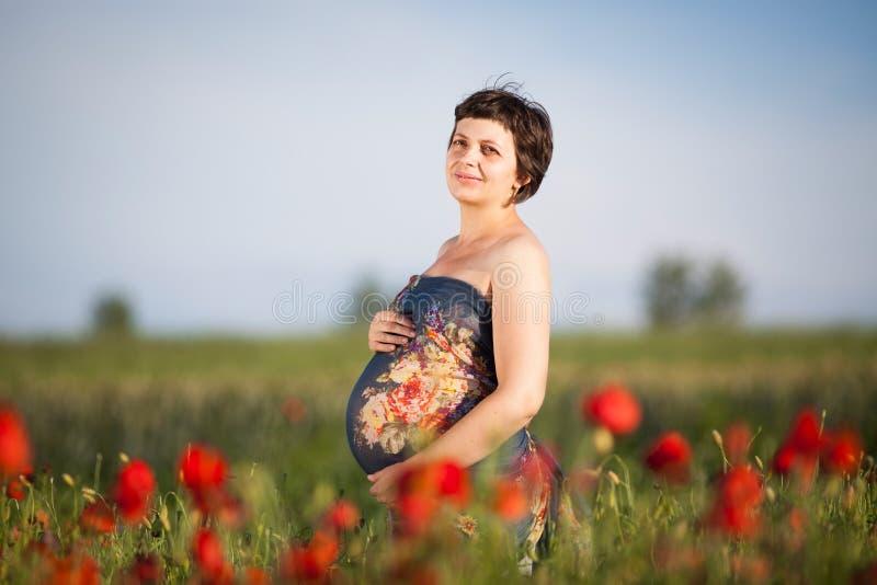 Schwangere glückliche Frau auf einem blühenden Mohnblumengebiet stockbild