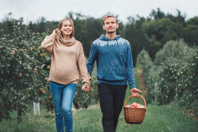 Schwangere junge blonde kaukasische Frau mit Ehemann auf Apfelbauernhof stockfoto
