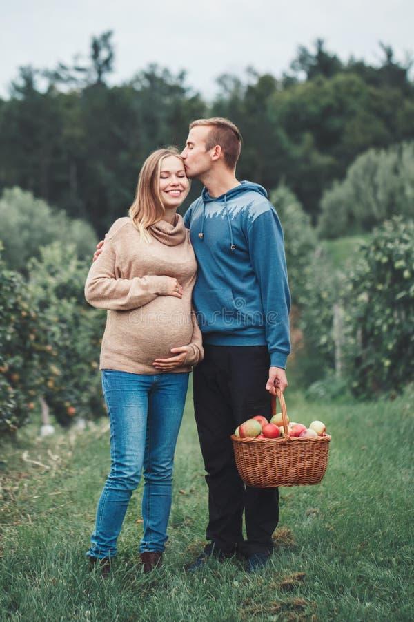 Schwangere junge blonde kaukasische Frau mit Ehemann auf Apfelbauernhof stockfotografie