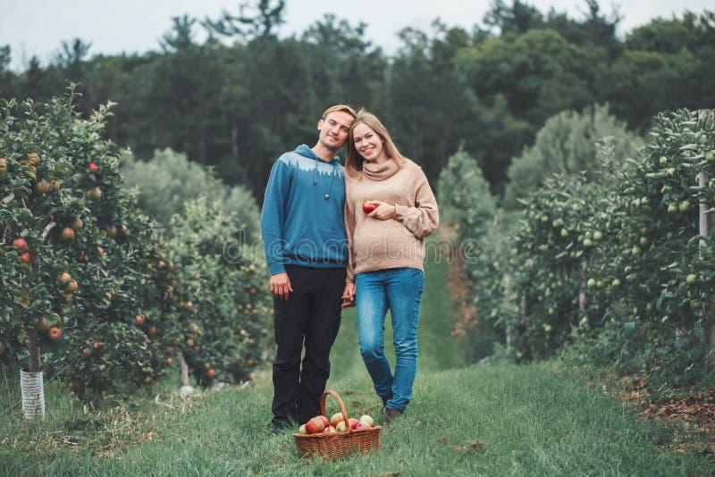 Schwangere junge blonde kaukasische Frau mit Ehemann auf Apfelbauernhof lizenzfreies stockbild