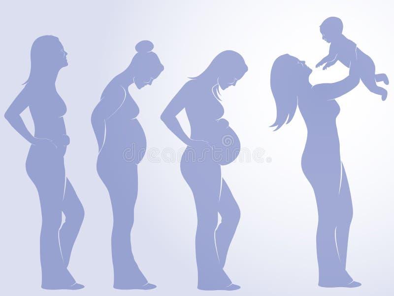 Schwangerschaft lizenzfreie abbildung