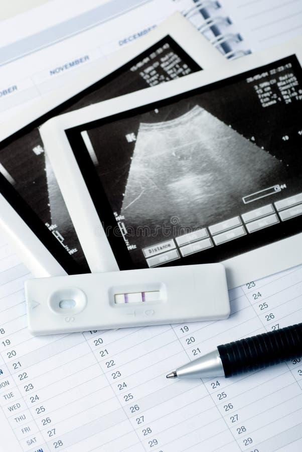 Schwangerschaftplanung stockfoto