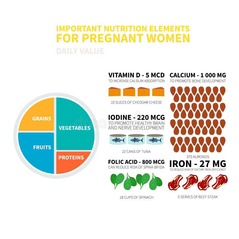Schwangerschaftsnahrung infographic stock abbildung