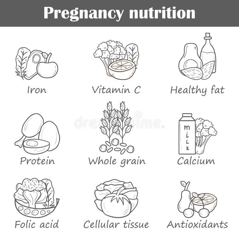 Schwangerschaftsnahrungsgegenstände stock abbildung