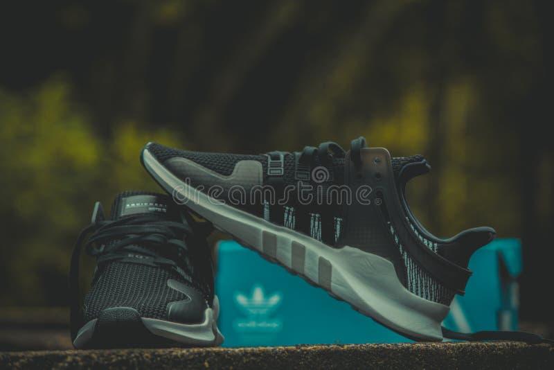 Schwarz-Grau-Adidas-Sneakers mit Box stockfotografie