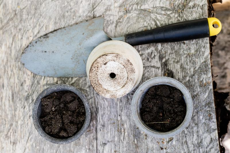 Schwarze Boden- und Blumentöpfe bestimmten für Zierpflanzenbau Transpla lizenzfreies stockbild