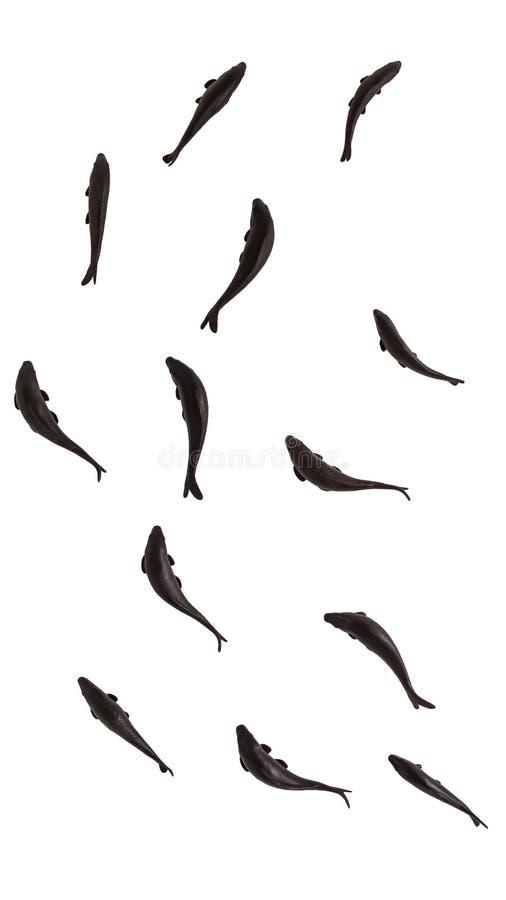 Schwarze Fische lokalisiert auf weißem Hintergrund, Wiedergabe 3D lizenzfreies stockbild