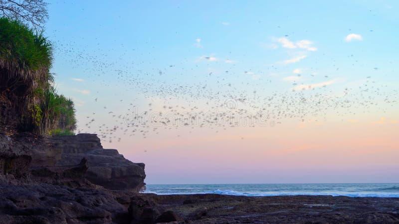 Schwarze Fledermäuse Silhouetten fliegen auf blauem Himmel in Pura Tanah Lot, Bali Strand bei Sonnenuntergang Die beliebteste Tou lizenzfreie stockfotografie