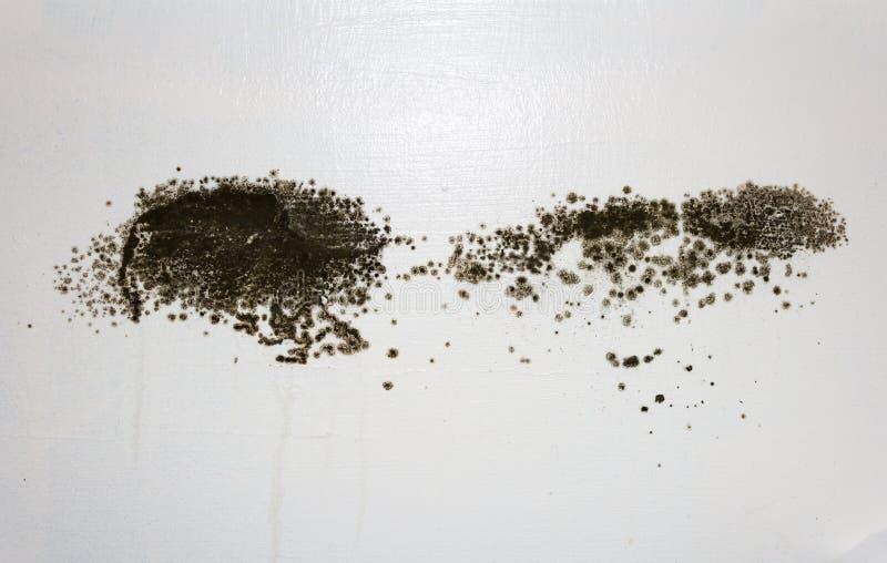 Schwarze Form auf einer Wand stockfotos