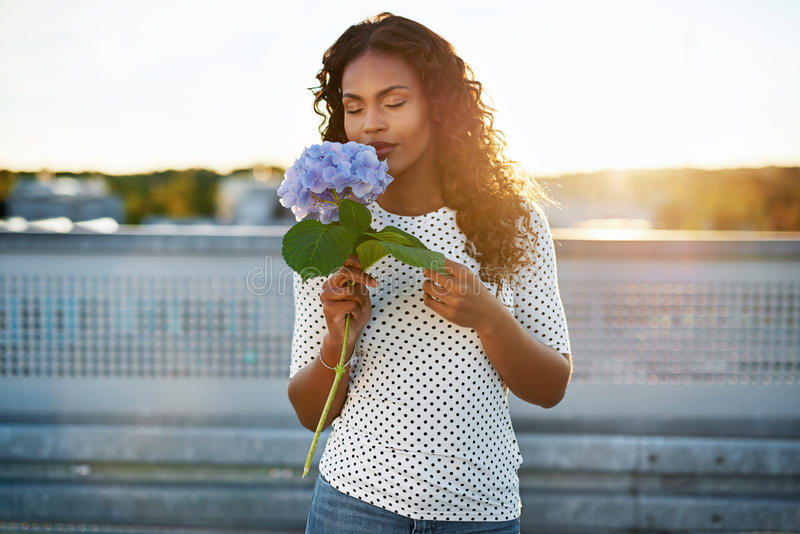 Schwarze Frau, die eine hübsche Blume riecht stockfotografie