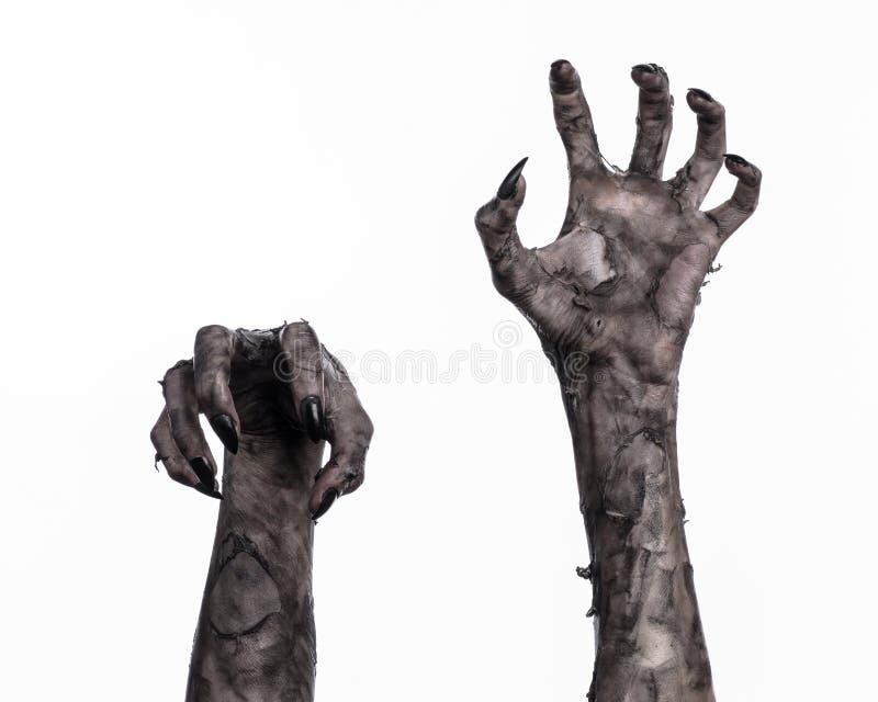 Schwarze Hand des Todes, absolut gehen, Zombiethema, Halloween-Thema, Zombiehände, weißer Hintergrund, Mamahände lizenzfreies stockfoto