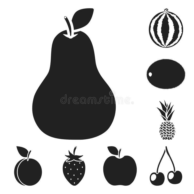 Schwarze Ikonen der verschiedenen Früchte in der Satzsammlung für Design Früchte und Vitamine vector Netzillustration des Symbols vektor abbildung