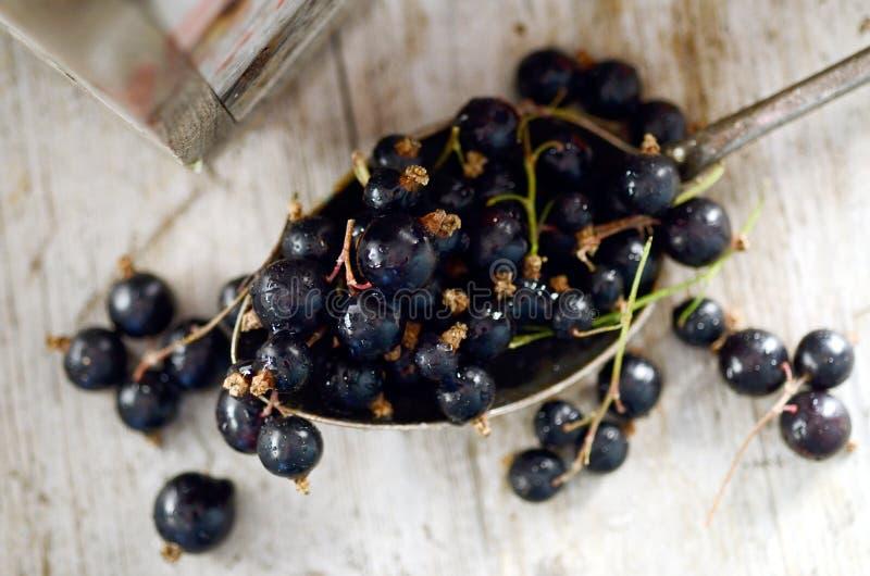 Schwarze Johannisbeeren in einem großen Löffel auf einer hölzernen Tabelle stockfoto