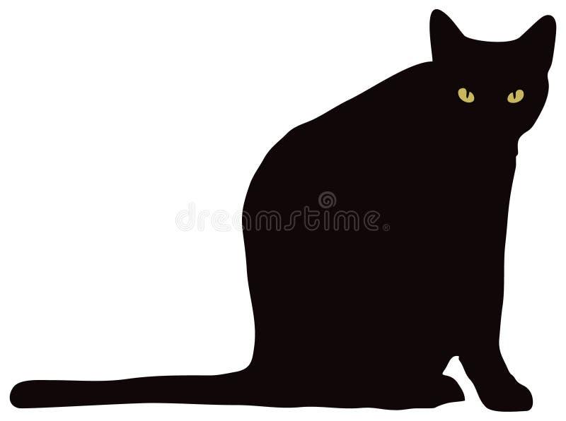 Schwarze Katze, die Kamera betrachtet stockfotografie