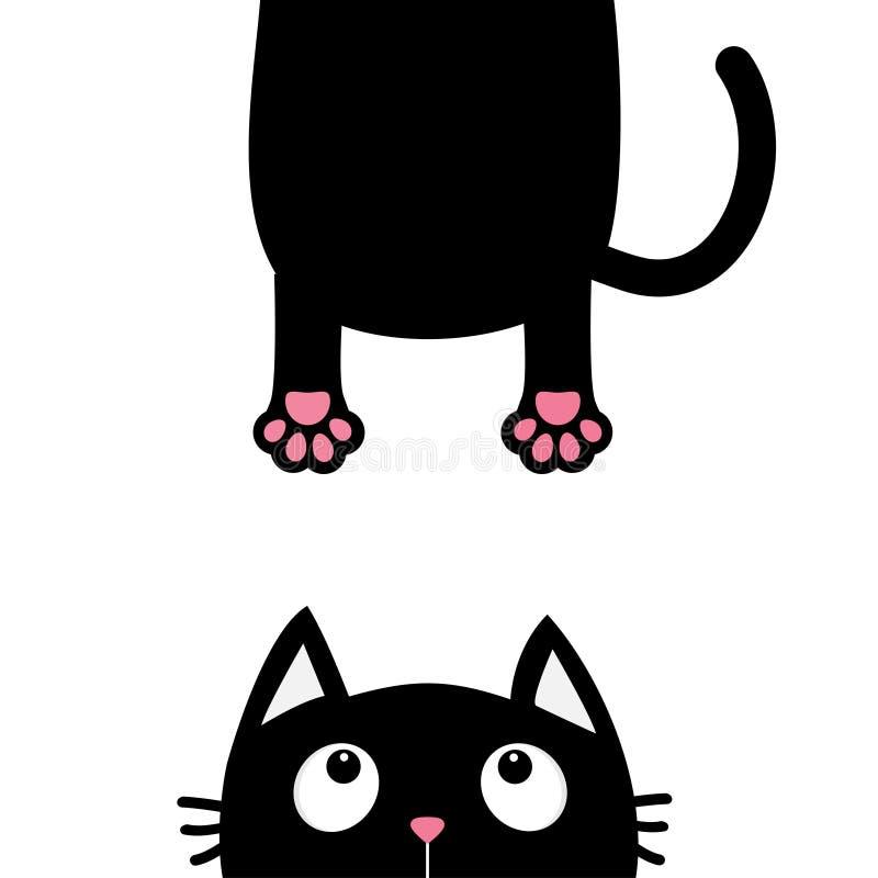 Schwarze Katze, die oben schaut Lustiges Gesichtskopfschattenbild Hängender fetter Körperpfotenabdruck, Endstück Kawaii-Tier Spaß stock abbildung