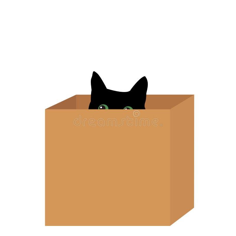 Schwarze Katze in einem Kasten lizenzfreie abbildung
