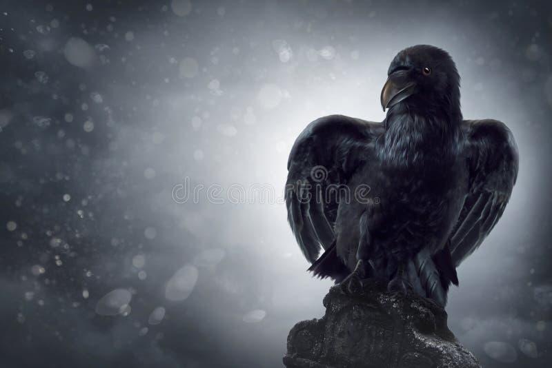 Schwarze Krähe auf einem Grabstein lizenzfreies stockbild