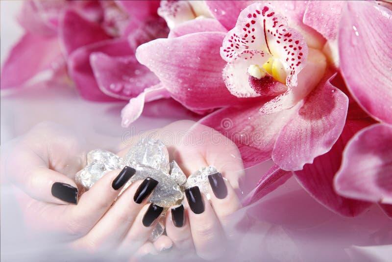 Schwarze lange Nägel mit Orchidee lizenzfreie stockbilder