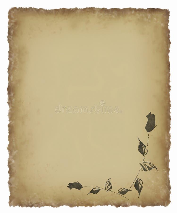 Schwarze Rose auf altem Pergament stock abbildung