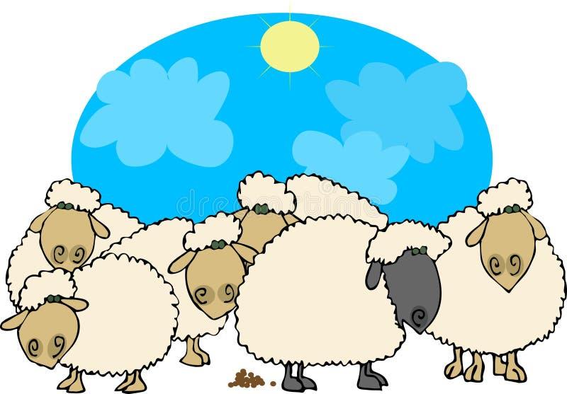 Schwarze Schafe stock abbildung