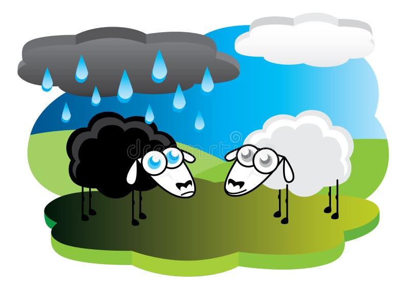 Schwarze Schafe mit Regenwolke lizenzfreie abbildung