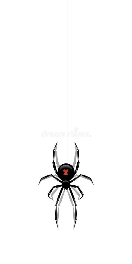 Schwarze Spinne, die an einem Netz lokalisiert auf weißem Hintergrund hängt Einfach zu bearbeiten lizenzfreie abbildung
