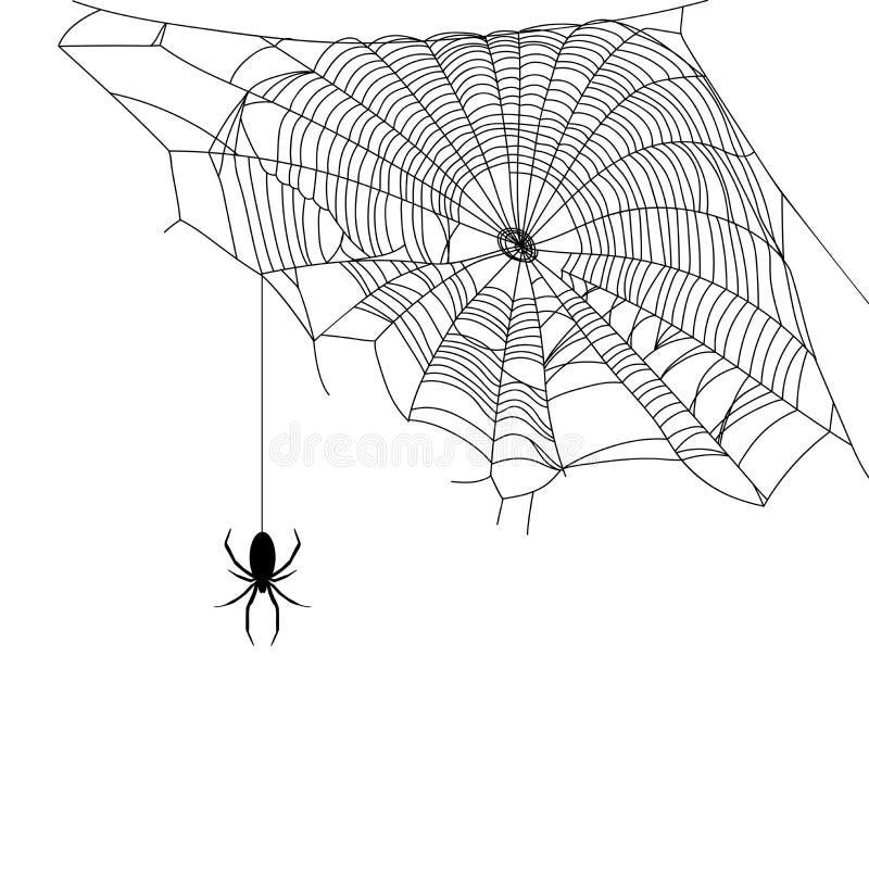 Schwarze Spinne und Netz lizenzfreie abbildung