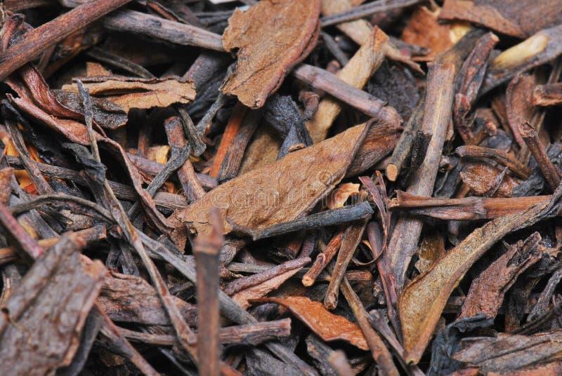 Schwarze Teeblätter stockfoto