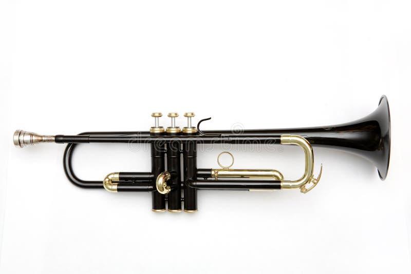 Schwarze Trompete lizenzfreie stockfotografie