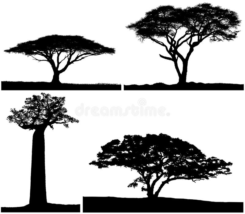 Schwarze U. Weiße Farben Des Schattenbildes Mit Vier Bäumen Stock ...