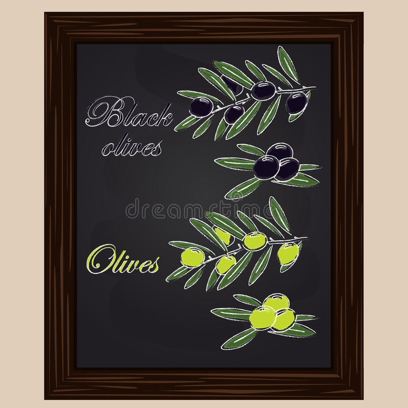 Schwarze und grüne Oliven vektor abbildung