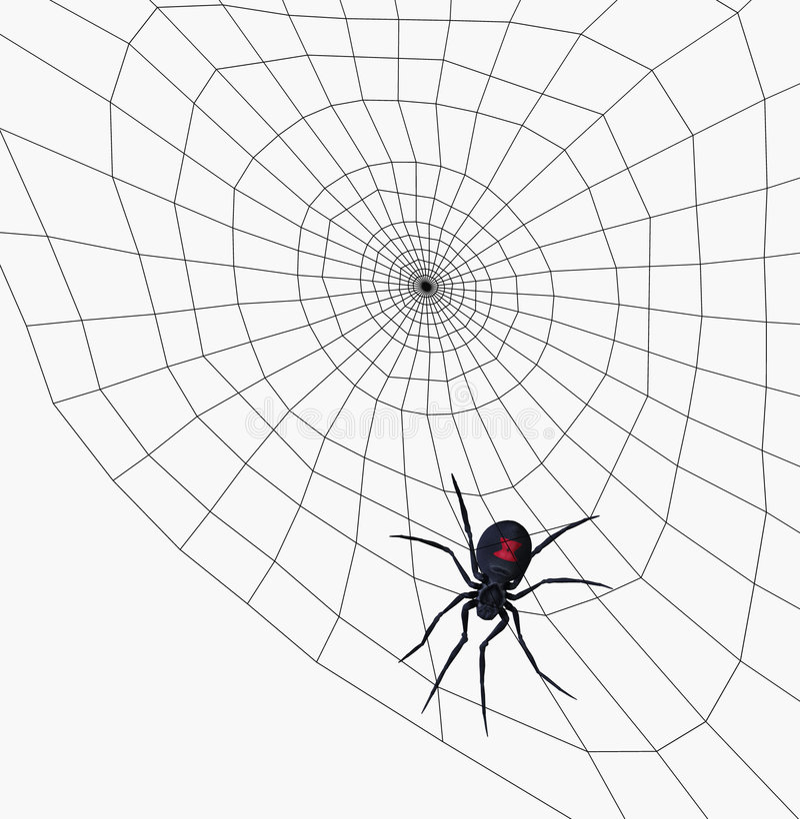Schwarze Witwen-Spinne auf Web - enthält Ausschnittspfad lizenzfreie abbildung