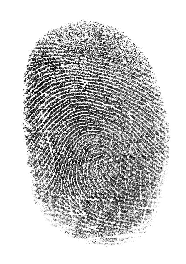 Schwarzer Fingerabdruck getrennt auf Weiß stock abbildung
