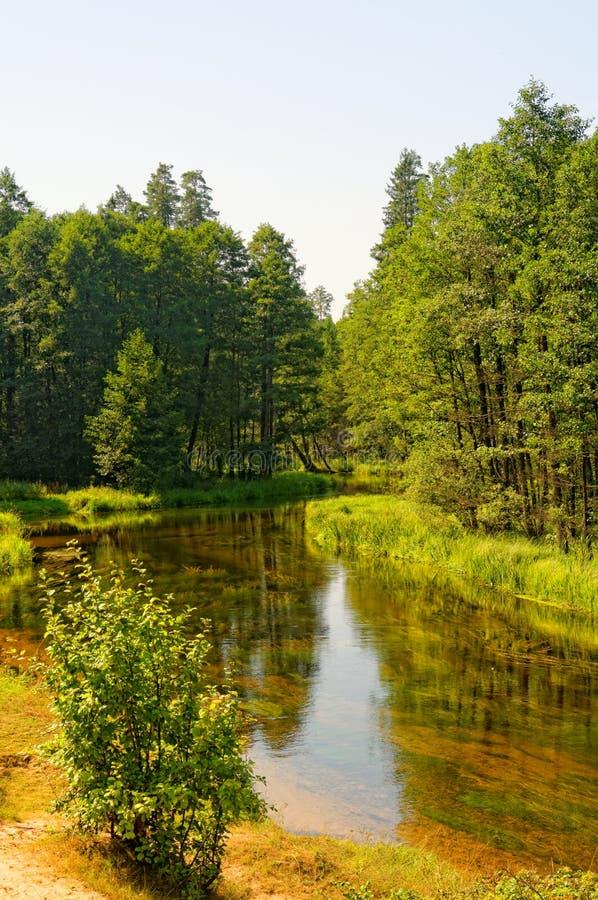Schwarzer Hancza-Fluss stockbilder