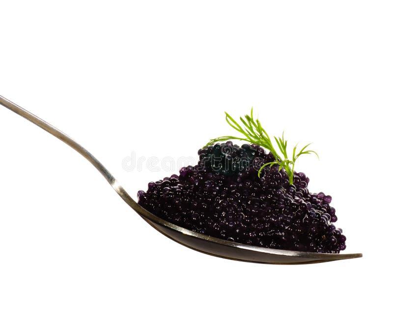 Schwarzer Kaviar in einem Löffel stockfotografie