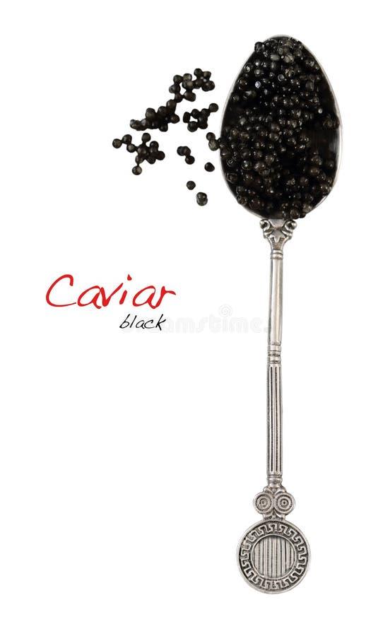 Schwarzer Kaviar im Löffel lizenzfreies stockfoto