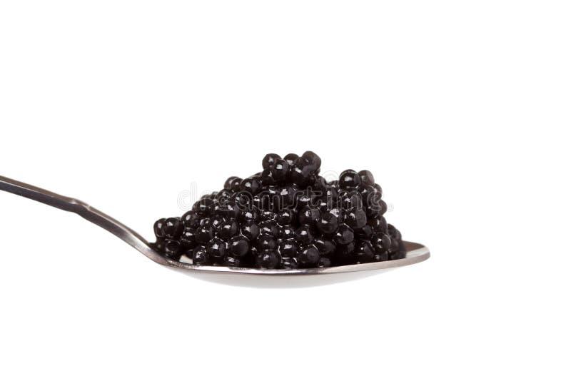 Schwarzer Kaviar im Löffel auf Weiß stockfotos