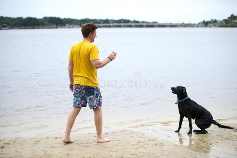 Schwarzer Labrador-Hund, der auf dem Ufer von einem Teich sitzt stockfotografie