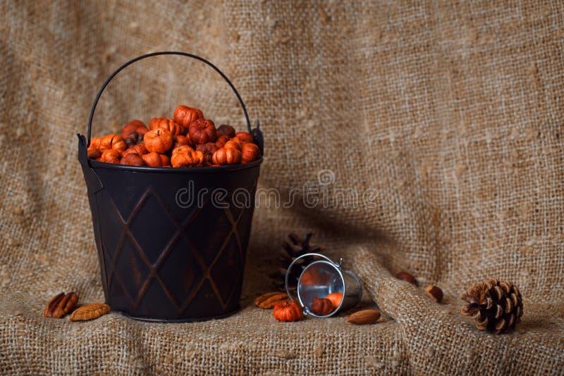 Schwarzer metallischer glänzender Eimer mit kleinen putka Kürbishülsen stockfotografie