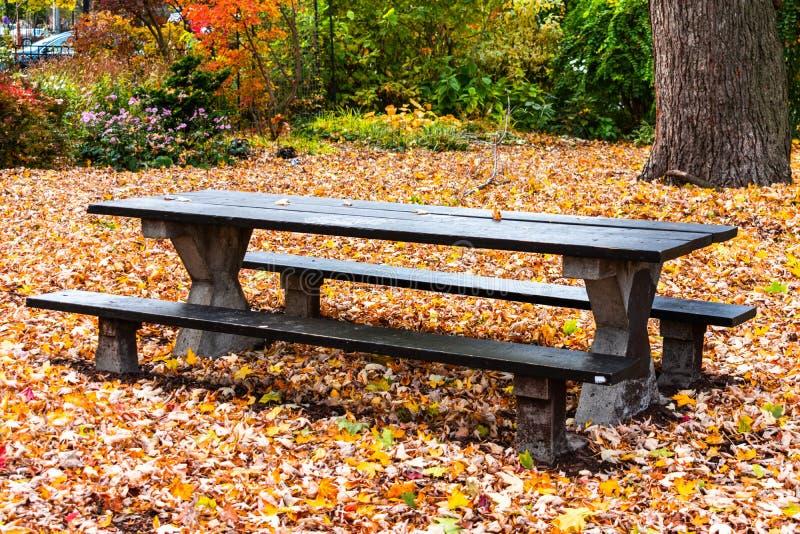 Schwarzer Picknicktisch in einem Park während des Herbstes umgeben durch gefallene Blätter lizenzfreie stockfotos