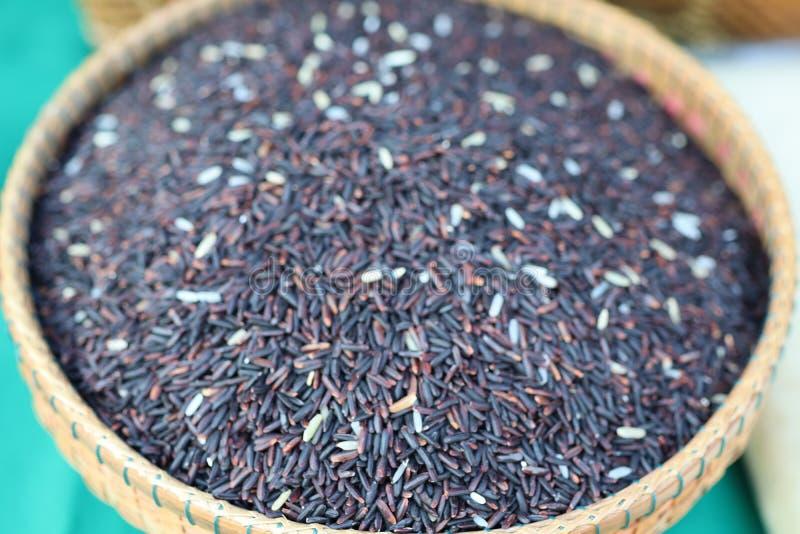 Schwarzer Reis ist ein Getreide, das das world& x27; s-Bevölkerung verbraucht als wichtige Nahrung Besonders in Asien lizenzfreie stockfotografie